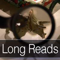 Long Reads button